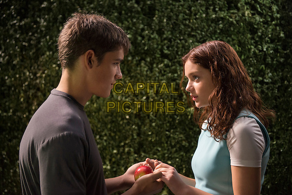 Brenton Thwaites, Odeya Rush<br /> in The Giver (2014) <br /> *Filmstill - Editorial Use Only*<br /> CAP/FB<br /> Image supplied by Capital Pictures