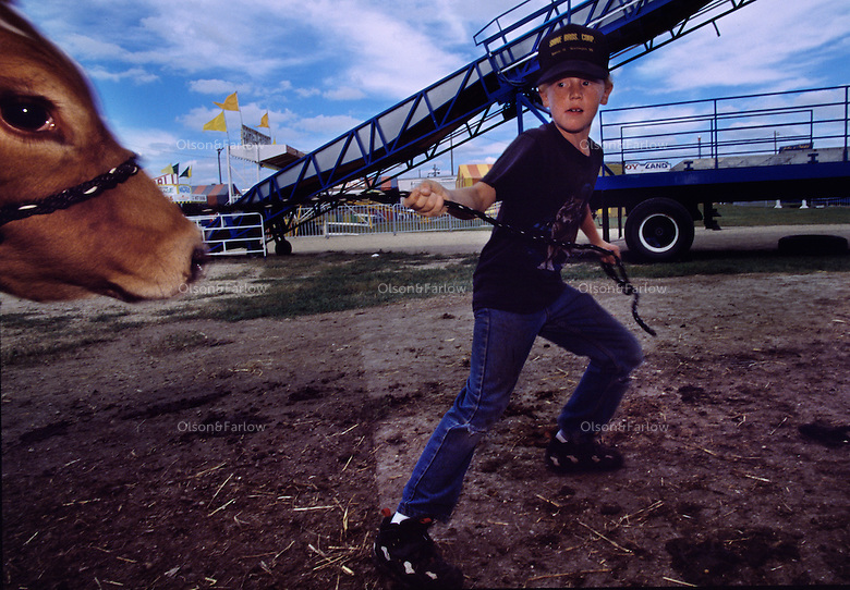 No time to play on the giant slide looming behind him, a young boy from Minnesota drags a reluctant calf to water.