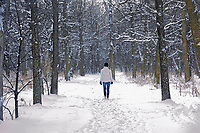 Walking a trail in winter. St. Vital Park<br />