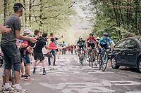 Alejandro Valverde (ESP/Movistar) up the C&ocirc;te de la Roche aux Faucons<br /> <br /> 104th Li&egrave;ge - Bastogne - Li&egrave;ge 2018 (1.UWT)<br /> 1 Day Race: Li&egrave;ge - Ans (258km)
