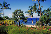 tropical coastal scenic showing palm trees and flora and fauna in foreground. Kaanapali Hawaii, Maui.