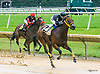 Lady's Island winning at Delaware Park on 7/29/17