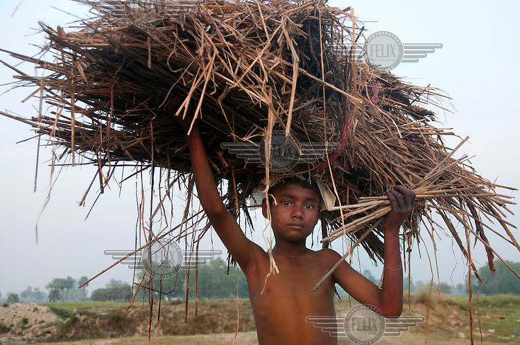A young boy carries a bundle of straw.