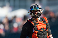 Oregon State Beavers catcher Troy Claunch (17) during a game against the Gonzaga Bulldogs on February 16, 2019 at Surprise Stadium in Surprise, Arizona. Oregon State defeated Gonzaga 9-3. (Zachary Lucy/Four Seam Images)
