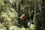 Chile, Lake Country: Canopying or ziplining adventure sport of sliding on a steel line through the canopy of the trees at Peulla..Photo #: ch621-33469..Photo copyright Lee Foster www.fostertravel.com, lee@fostertravel.com, 510-549-2202.