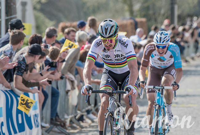 Peter Sagan (SVK/Bora-Hansgrohe)<br />  &amp; Oliver Naesen (BEL/AG2R-LaMondiale) in pursuit up the Taaienberg<br /> <br /> 101th Ronde Van Vlaanderen 2017 (1.UWT)<br /> 1day race: Antwerp &rsaquo; Oudenaarde - BEL (260km)