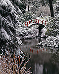 Seattle, WA<br /> Red foot bridge and reflecting pond after heavy winter snow, Kubota Gardens