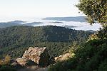 Panorama ridge in Castle Rock SP
