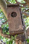 Bird House, Emiliana Organic Vineyards