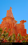 Queen Victoria Hoodoo, Queen's Garden Trail, Bryce Canyon National Park, Utah