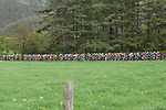 The peleton head through the Ardennes forests during the 104th edition of La Doyenne, Liege-Bastogne-Liege 2018 running 258.5km from Liege to Ans, Belgium. 22nd April 2018.<br /> Picture: ASO/Karen Edwards | Cyclefile<br /> <br /> <br /> All photos usage must carry mandatory copyright credit (&copy; Cyclefile | ASO/Karen Edwards)