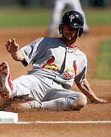 Shane Robinson / Peoria Saguaros 2008 Arizona Fall League..Photo by:  Bill Mitchell/Four Seam Images