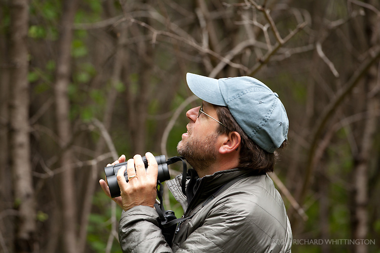 "Michael O'Brien was our VENT birding guide along with his wife Louise Zemaitis. He is a freelance artist, author, and environmental consultant living in Cape May, New Jersey. He has a passionate interest in bird vocalizations and field identification, and a serious addiction to migration and nocturnal birding. His travels have taken him throughout North and Central America and beyond. At home in Cape May, Michael serves as an Associate Naturalist with Cape May Bird Observatory for whom he conducts numerous workshops, and, for many years, conducted a fall songbird migration count. He is co-author of The Shorebird Guide, Flight Calls of Migratory Birds, and America's 100 Most Wanted Birds, and is primary author of Larkwire.com, an online application for learning bird sounds. His illustrations have been widely published in books and field guides, including the National Geographic Field Guide to the Birds of North America and the new Peterson field guides. Michael also has an intense interest in butterflies, leads several ""Birds & Butterflies"" tours with his wife, Louise Zemaitis, and is coordinator of the Cape May Butterfly Count."