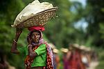 20/08/13_Assam Tea Workers