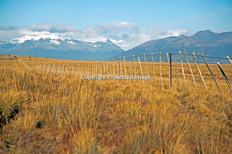 Vast Grasslands of Patagonian Steppe in Argentina