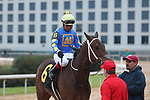 January 24, 2020: Gold Street with jockey Martin Garcia aboard after winning the Smarty Jones Stakes at Oaklawn Racing Casino Resort in Hot Springs, Arkansas on January 24, 2020. Justin Manning/Eclipse Sportswire/CSM