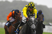 Winner of The Brunton Publications Pembroke Handicap Alfred Boucher ridden by David Probert and trained by Henry Candy  during Horse Racing at Salisbury Racecourse on 14th August 2019