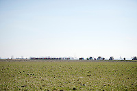 After leaving the coast, the peloton gets into the open 'Polders' where usually wind is king (but not today) <br /> <br /> 3 Days of West-Flanders 2015<br /> stage 2: Nieuwpoort - Ichtegem 184km