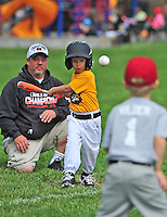 T-BALL MARAUDERS