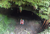 """Do Not Enter"" sign in the closed section of Thurston Lava Tube, Hawai'i Volcanoes National Park, Big Island."
