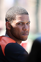 Baltimore Orioles Robert Andino #11 during a spring training game vs. the Philadelphia Phillies at Bright House Field in Clearwater, Florida;  March 8, 2011.  Philadelphia defeated Baltimore 4-3.  Photo By Mike Janes/Four Seam Images