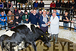 Mart Talk<br /> ------------<br /> Hugh O'Connell , Scartaglen, (centre) received 1st prize for his Supreme Champion Heffer spring calving over 2yrs from Judge Norman Bateman at Gortalea mart last Thursday afternoon with Maurice Brassil mart manager