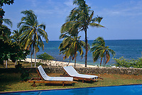 A pair of sun loungers on the edge of a swimming pool with wind-blown palm trees and the ocean beyond