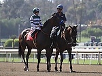 "June 14, 2014: Iotapa with Joe Talamo aboard wins the Grade I ""Win and You're In"" Shoemaker Mile at Santa Anita Park in Arcadia, California. Zoe Metz/ESW/CSM"
