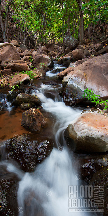 A stream runs down Miloli'i Canyon offering an oasis on the very dry Na Pali coast of Kauai.