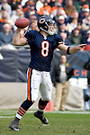 2006-NFL-Wk9-Dolphins at Bears