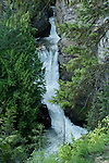 Myrtle Creek falls during spring snowmelt