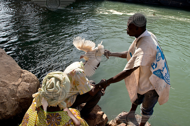 A man carries out a traditional ritual with a chicken on the banks of the Niger River.