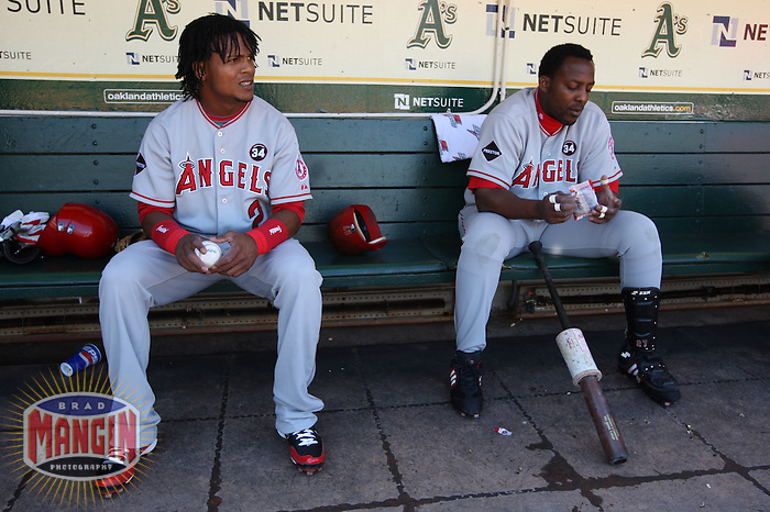 OAKLAND, CA - OCTOBER 3:  Erick Aybar #2 and Vladimir Guerrero #27 of the Los Angeles Angels of Anaheim get ready in the dugout before the game against the Oakland Athletics at the Oakland-Alameda County Coliseum on October 3, 2009 in Oakland, California. Photo by Brad Mangin