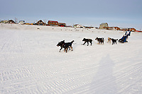 Scott White on the Bering Sea just a mile and a half from the finish line in Nome during the 2010 Iditarod
