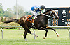 Tizawonderfullife winning at Delaware Park on 5/26/12