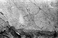 Incisioni rupestri Valcamonica