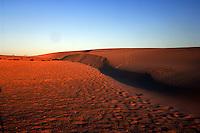 Sand dunes early morning at Corralejo, Fuerteventura, Canary Islands, Spain