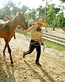 MEXICO, Maya Riviera, Mexican Cowboy leading his horse, Yucatan Peninsula