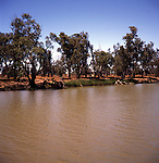 River channel of Murray River, Victoria, Australia