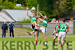 Colin McGillicuddyMid Kerry  and Denis Sheehan Legion's contest the dropping ball during their County SFC round 1 game in Killorglin on Sunday