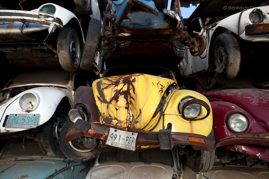 """May 23, 2011 - Mexico - Old Volkswagen car """"VW beetle"""" seized by the government in a junkyard outside of Mexico City. The VW Beetle was the longest-running and most-manufactured automobile of a single design platform anywhere in the world. Mexican production began in 1955 . VW announced the end of production in June 2003, citing decreasing demand, and the final original Type 1 VW Beetle rolled off the production line at Puebla, Mexico, on 30 July 2003. Photo credit: Benedicte Desrus"""