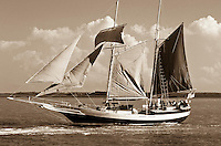 Black and White Tallship and Classic Sailboat Photography