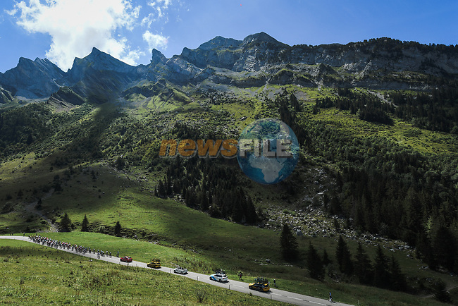 The peloton climb Col des Aravis during Stage 4 of Criterium du Dauphine 2020, running 157km from Ugine to Megeve, France. 15th August 2020.<br /> Picture: ASO/Alex Broadway | Cyclefile<br /> All photos usage must carry mandatory copyright credit (© Cyclefile | ASO/Alex Broadway)