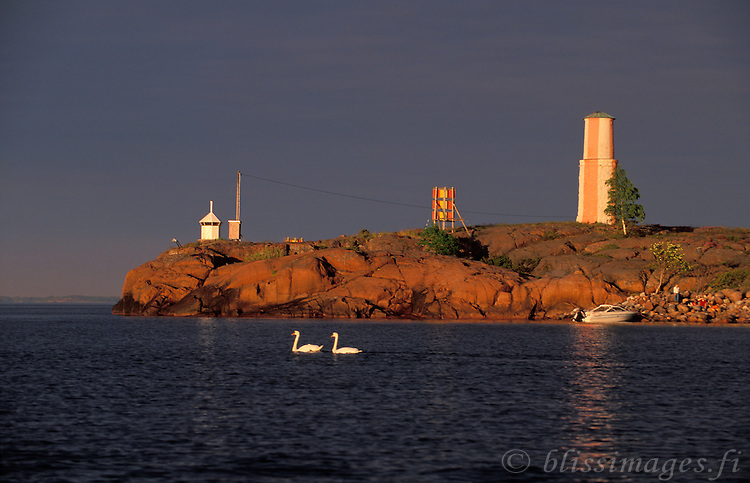 A pair of swans cruise by Ledskär Day Beacon on a warm summer's evening -Åland, Finland