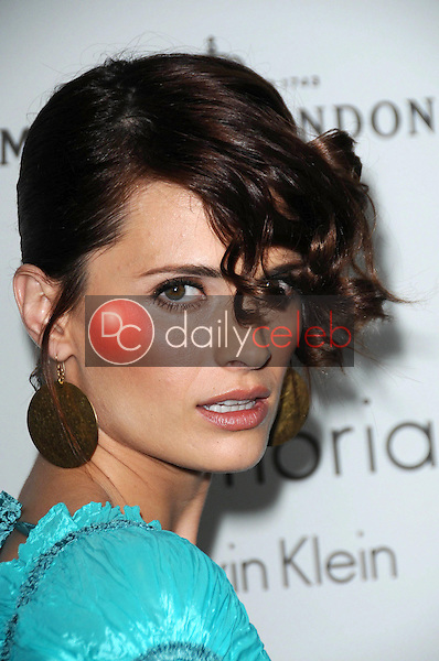 Stana Katic<br />at ELLE Magazine's 15th Annual Women in Hollywood Event. Four Seasons Hotel, Beverly Hills, CA. 10-06-08<br />Dave Edwards/DailyCeleb.com 818-249-4998