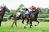 Complete St. winning The George Rosenberger Memorial stakes on Owners Day at Delaware Park on 9/13/14