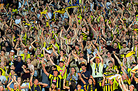 Phoenix fans celebrate at the final whistle of the A-League football match between Wellington Phoenix and Central Coast Mariners at Westpac Stadium in Wellington, New Zealand on Saturday, 12 January 2019. Photo: Dave Lintott / lintottphoto.co.nz