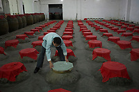 Gaomiao township, Meishan, Sichuan province, China, October 2014 - The owner of a local distillery checks  Gaoliang, or sorghum liquor.