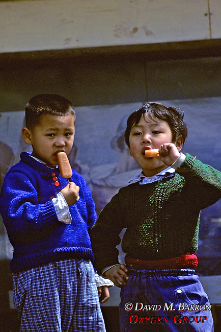 Young Boys Eating Popsicles