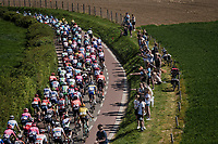 54th Amstel Gold Race 2019 (1.UWT)<br /> One day race from Maastricht to Berg en Terblijt (NED/266km)<br /> <br /> ©kramon